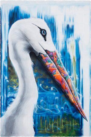 GraffBird